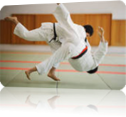 Vign_photo_judo_site